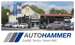 Anzeige Autohammer